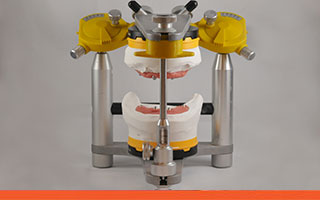 Articulator duplicating jaw movement
